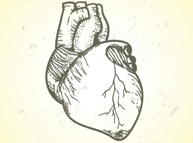 Dr.-Gaviono-Casu-software-cardiologo-ArzaMed3 Dr Gavino Casu Cardiologo
