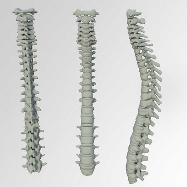 dolore-schiena_arzamed-600x600 Dr. Giampiero Gallo