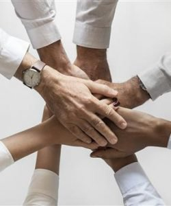Askonsulting-recensione-software-medico-Brescia-psicologia-del-lavoro-250x300 Askonsulting  software medico Brescia Psicologia del lavoro e delle Risorse umane
