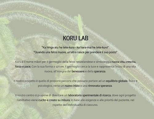 Koru-Lab-recensione-software-medico-multidisciplinare Koru Lab
