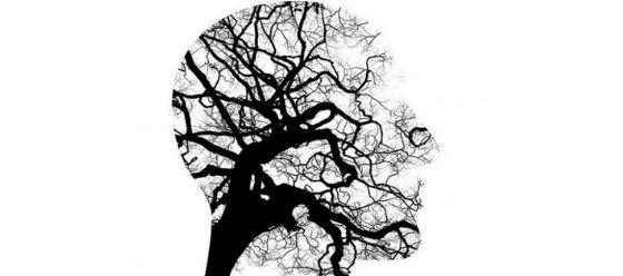 Software-medico-psicologia-_Dott.ssa-Latragna Elisabetta Latragna